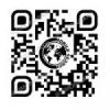 Комплексный пробив информац... - последнее сообщение от MobileSearch